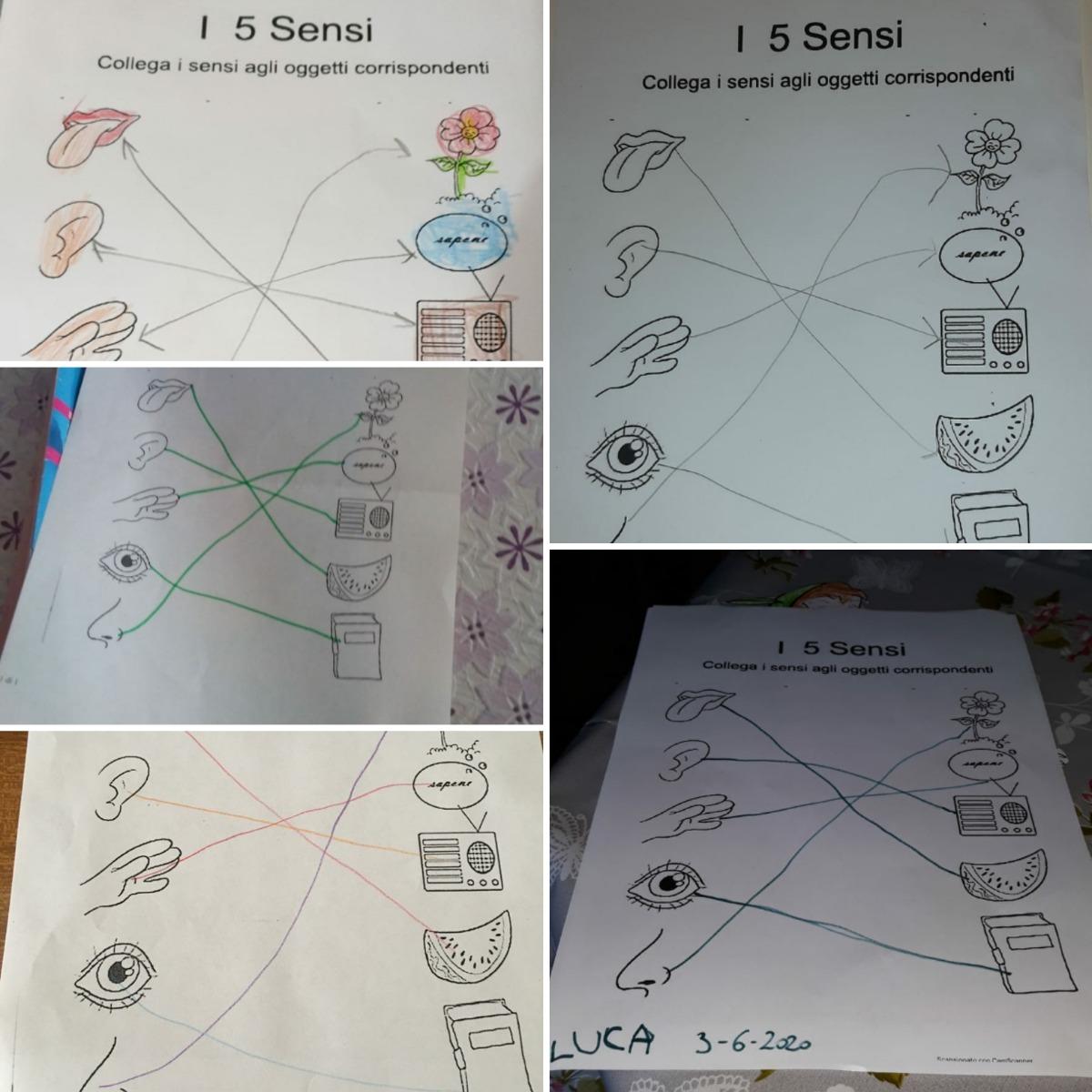 I 5 Sensi Sezione G